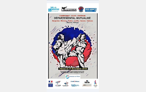 CHAMPIONNAT DÉPARTEMENTAL MUTUALISE 77/94